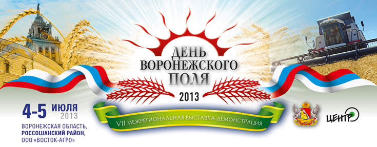 DAY of VORONEZH FIELD 2013